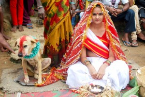 Dog Wedding: Indian Teenage Girl Marries Dog As Part Of Tribal Ritual