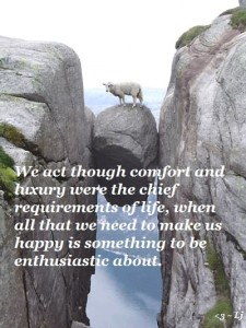 (X)(X)sheep-got-stuck-between-rocks-in-mountain--