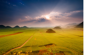 (X)breathtaking sights10-china canolafields06-640x426