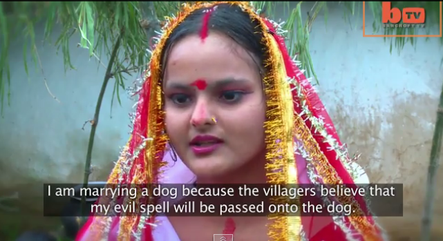 A Tail of Love: Indian Girl Marries Dog After Village Demand It