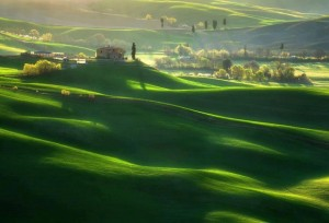 (x)COLOR10- Tuscany, Italy