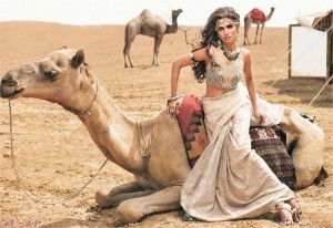 Bridal-Wear-Desert-Rose-Collection-2014-by-Shehla-Chatoor-3