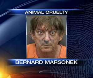 TERRIBLE: Man RAPES His Dog And Gets Stuck Inside It