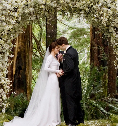 DJ Aligator - Close To You Lyrics : Twilight Saga 2 Official Wedding Soundtrack