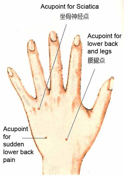 Hand Accupressure For Lower Back Pain And Sciatica