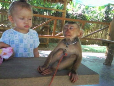 Photos of the Kid and the Pet: What's in a Face?