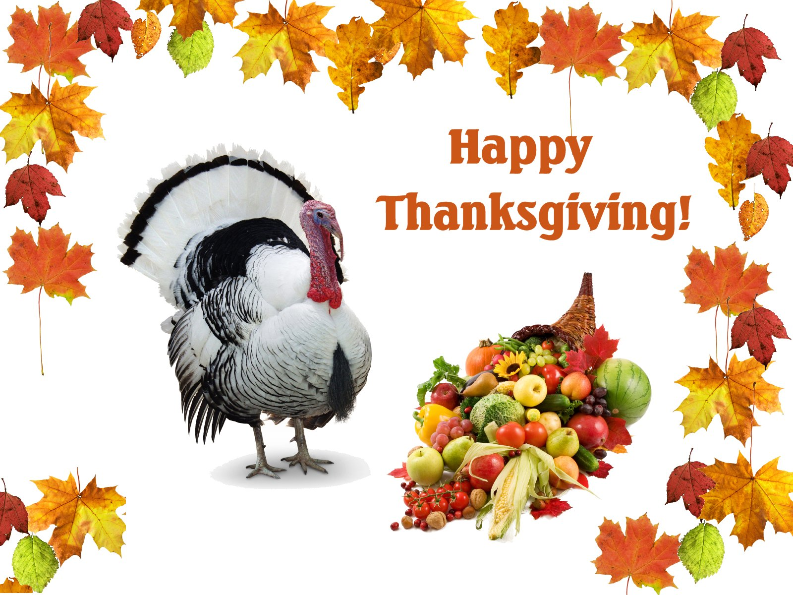 Thanks Giving and Its History..