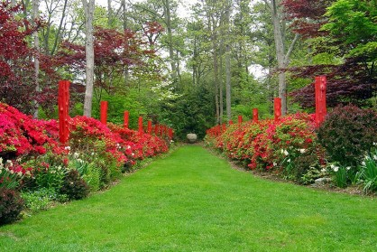 Photography: What Makes These Garden Photos Amazing