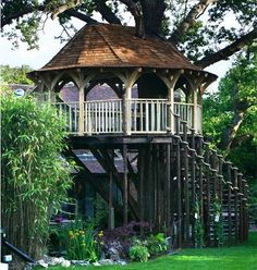 Architecture: Amazing Tree Houses To Live In