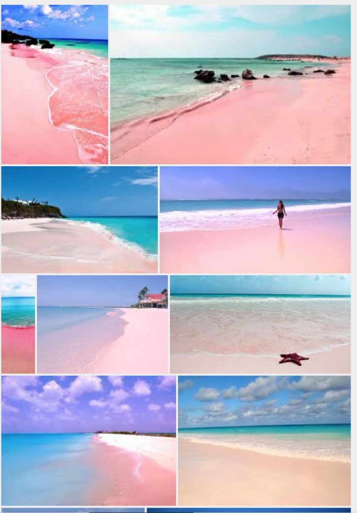 TRAVEL:  The Pink Sands Beach on Harbour Island, Bahamas
